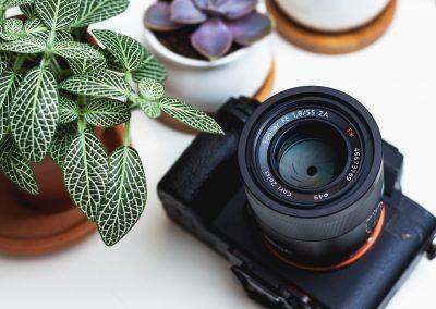 Fotos y multimedia